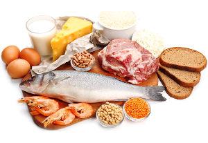 Nutrici n en movimiento noviembre 2017 asdeporte - Q alimentos son proteinas ...