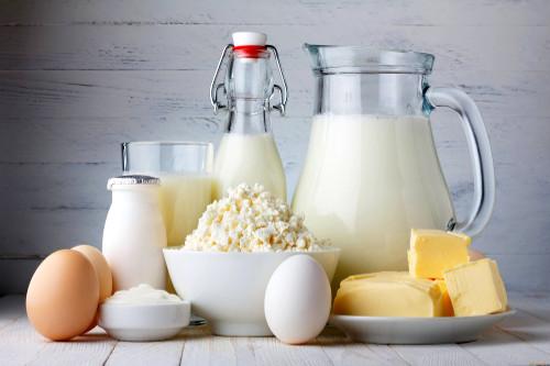 Probióticos lácteos