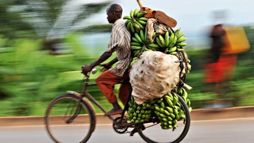 Bici plátanos África