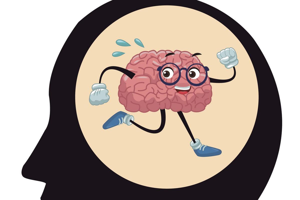conoce-funciona-cerebro-corres